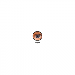 SofLens® 38 x6
